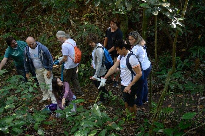 Mutirão de plantio de mudas na nascente do Rio Carioca